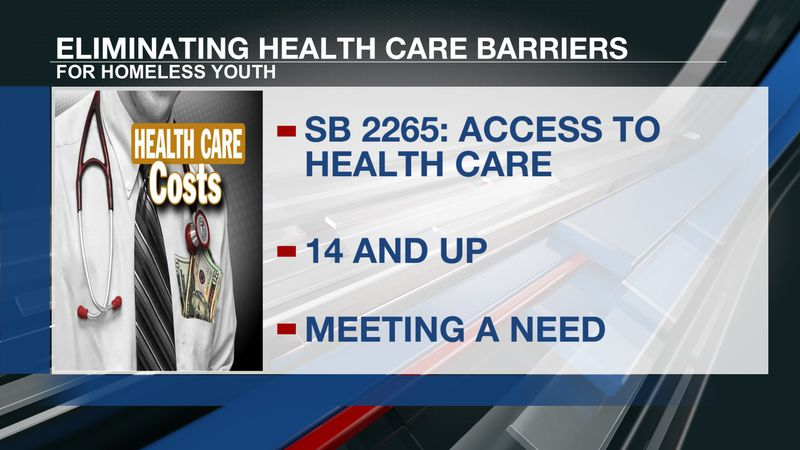 Bill to aid homeless youth
