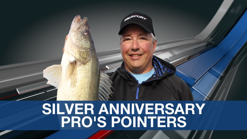 Pro's Pointer Silver Anniversary