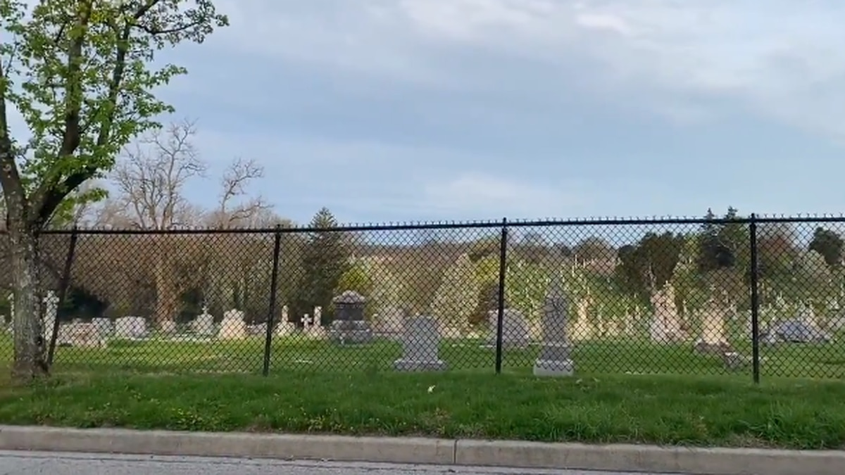 A cemetery was the site of monkey sightings on Wednesday night.