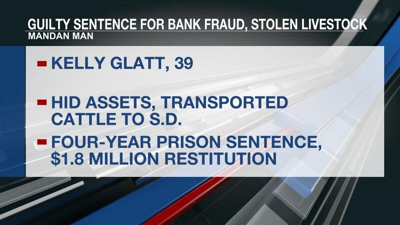 Kelly Glatt