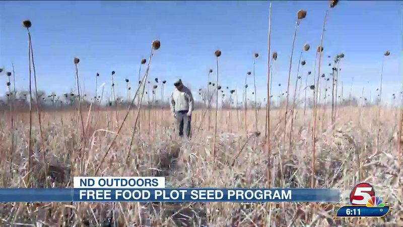 Free food plot seed program