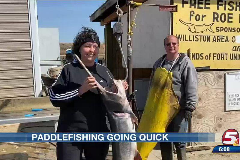 Paddlefish season