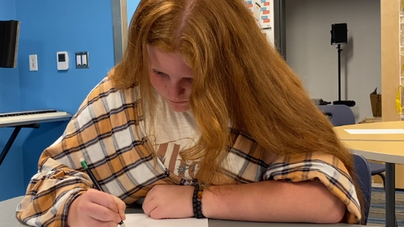 Williston 7th Grader Given Governor's Award in Art Show
