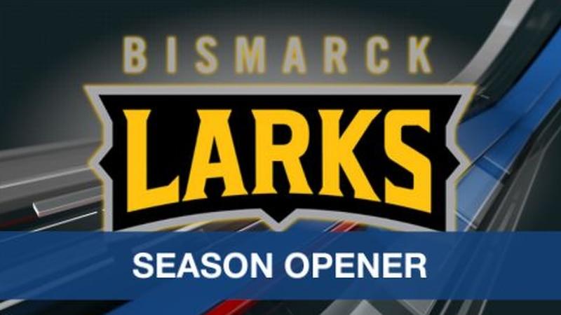 Bismarck Larks