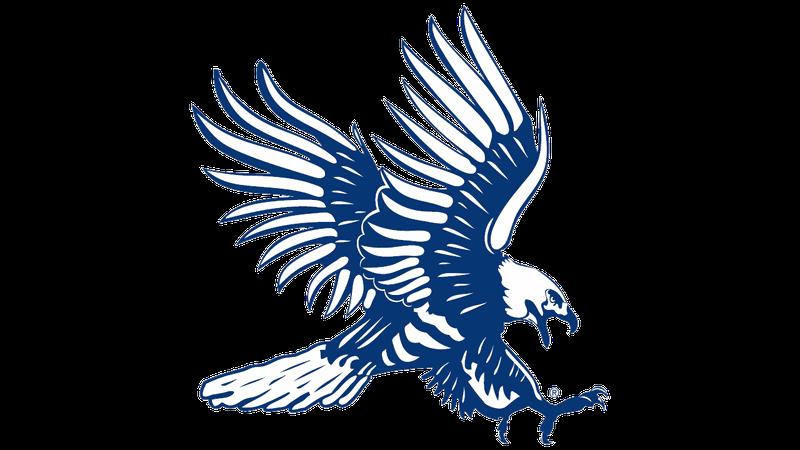 Dickinson State Football