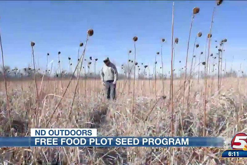 Free food plot seed program