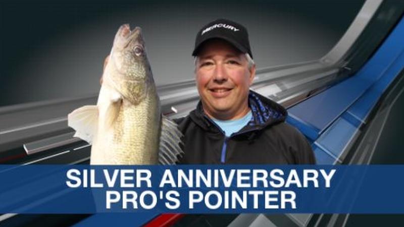 Pro's Pointer Anniversary Silver Anniversary